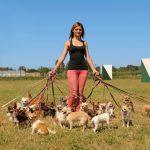 犬を助ける・犬の出産・犬がたくさん出てくる夢占いは?