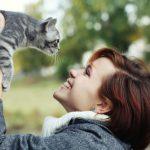 猫を撫でる・猫を抱っこする夢占いについて
