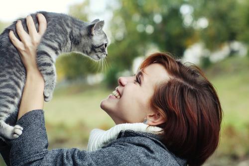 夢占い 猫 撫でる 抱っこ