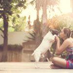 猫や犬・動物がしゃべる夢占いについて