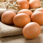 卵がたくさん出てくる夢と、ひよこの夢占いについて