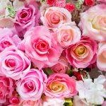 植物や花を育てる二つの夢占いの意味とは?