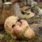 人形を作り、壊す夢占いは何を暗示するのか