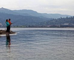 夢占い 川 渡る 釣り