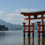 夢占いで、神社の境内や鳥居の夢の意味とは?
