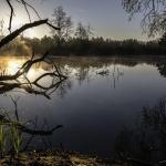 池を歩く夢や沈む夢の夢占いの意味は?