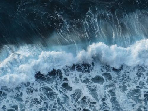 夢占い プール 魚 汚い 波