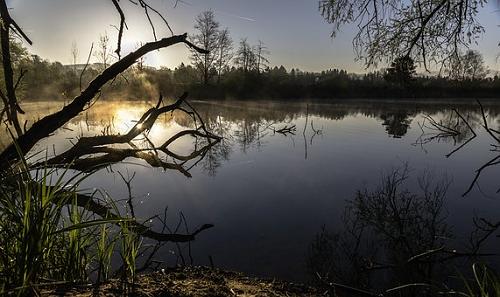夢占い 池 歩く 沈む