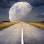 大きい犬や猫、大きい月の夢占いの意味とは!?